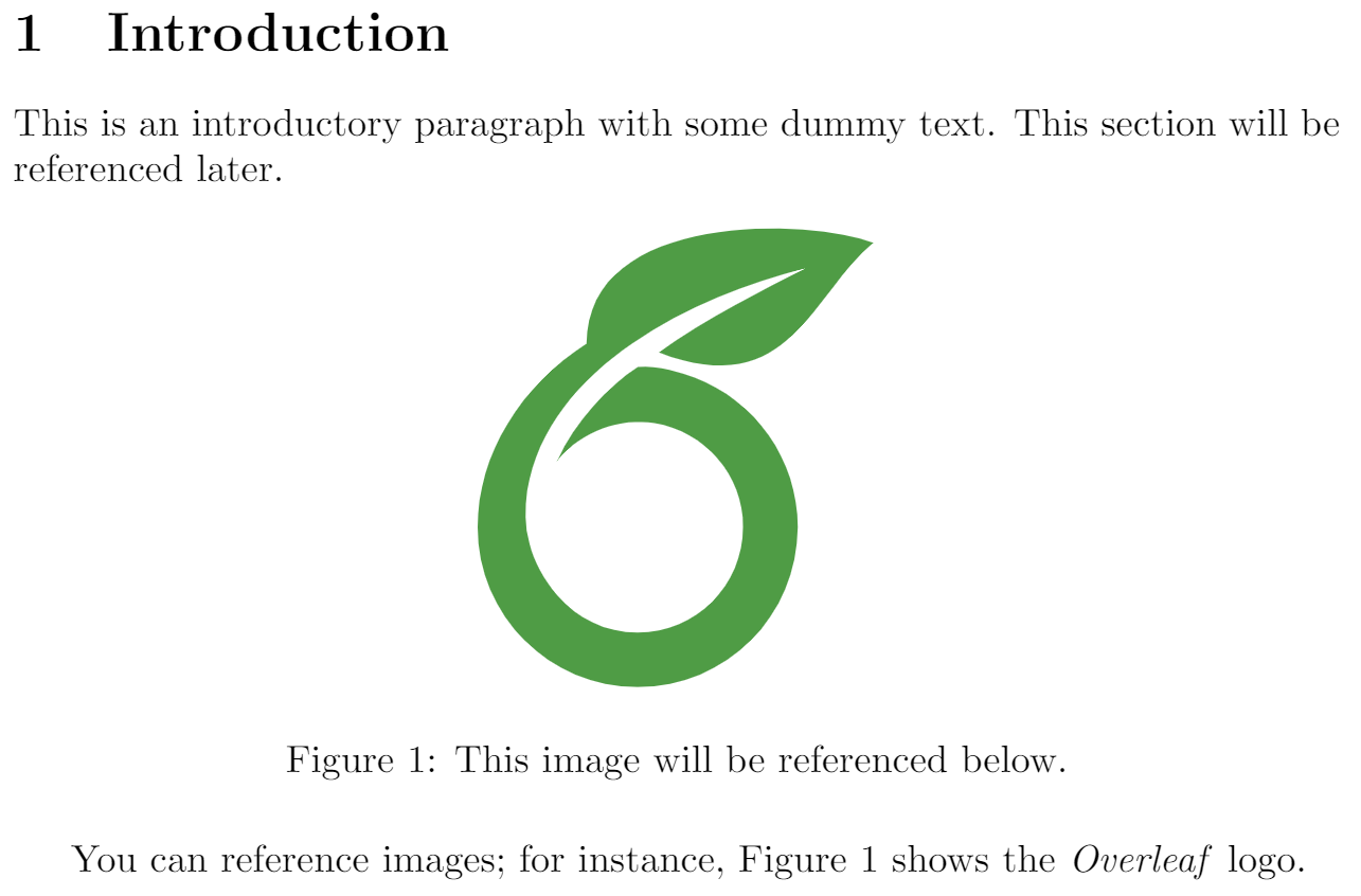 CrossReferencesEx1Overleaf.png